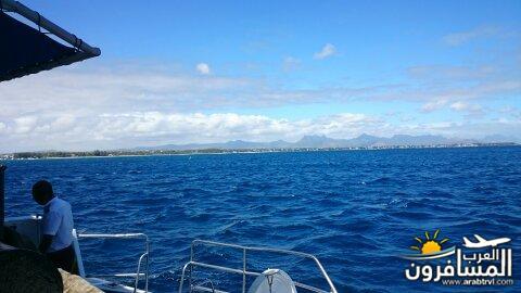 جزيرة موريشيوس بلاد الأبتسامة والسكر-691928