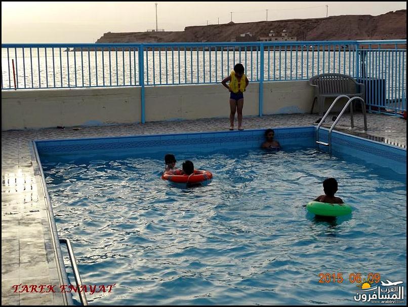 693332 المسافرون العرب رحلة غوص الى البحر الاحمر