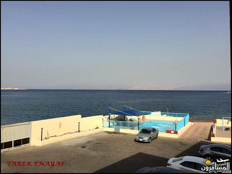 693333 المسافرون العرب رحلة غوص الى البحر الاحمر