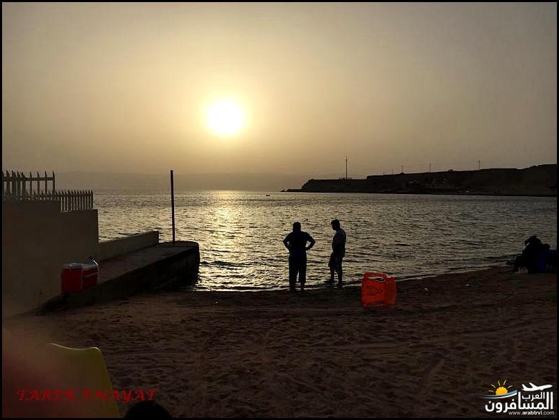 693348 المسافرون العرب رحلة غوص الى البحر الاحمر