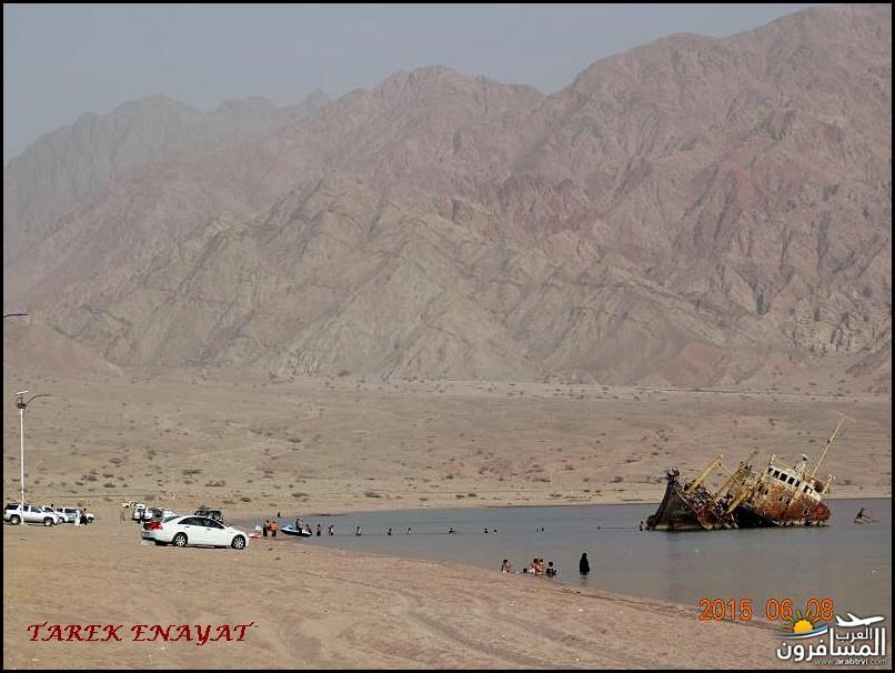 693352 المسافرون العرب رحلة غوص الى البحر الاحمر