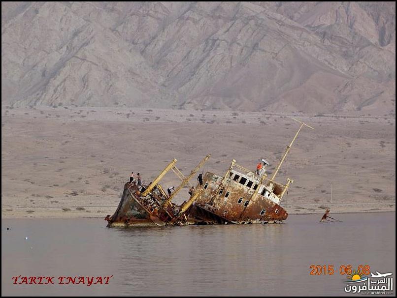 693353 المسافرون العرب رحلة غوص الى البحر الاحمر