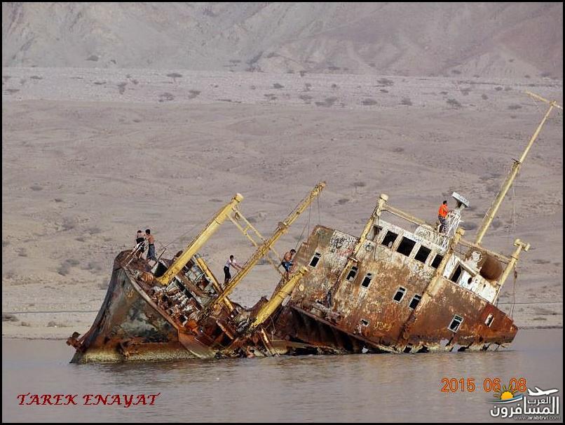 693354 المسافرون العرب رحلة غوص الى البحر الاحمر
