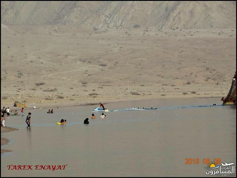 693355 المسافرون العرب رحلة غوص الى البحر الاحمر