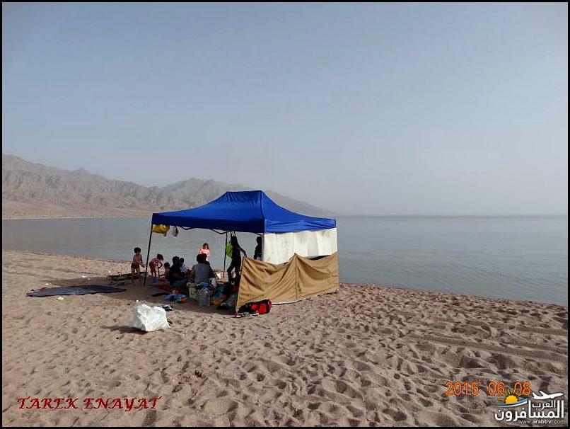 693356 المسافرون العرب رحلة غوص الى البحر الاحمر