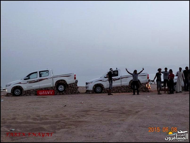 693384 المسافرون العرب رحلة غوص الى البحر الاحمر