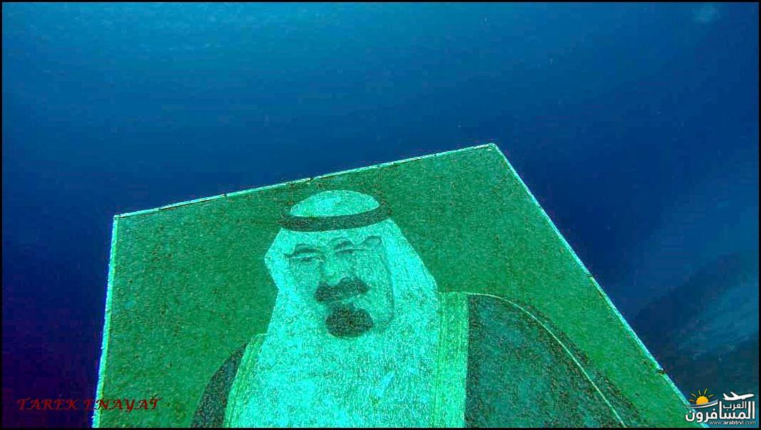 arabtrvl1438068066656.jpg