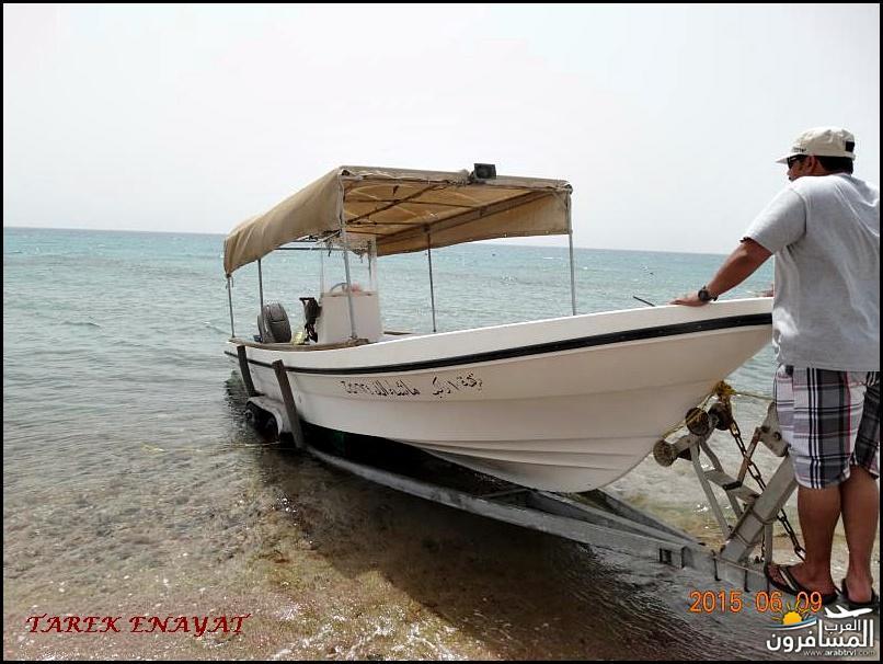 693453 المسافرون العرب رحلة غوص الى البحر الاحمر