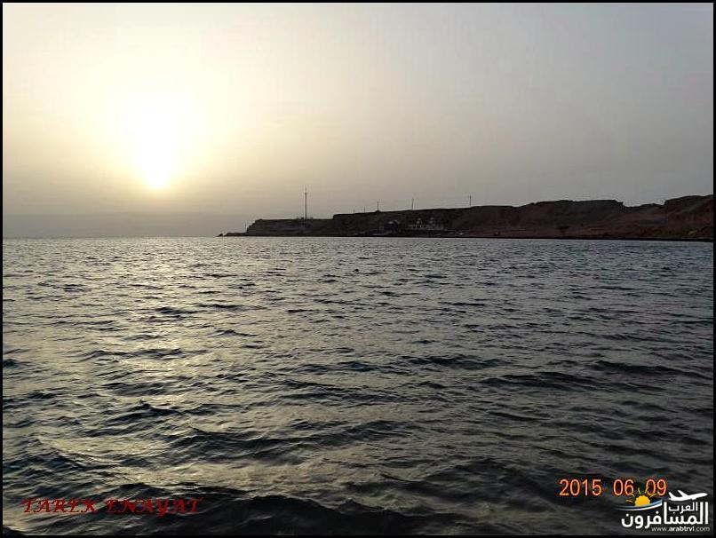 693459 المسافرون العرب رحلة غوص الى البحر الاحمر