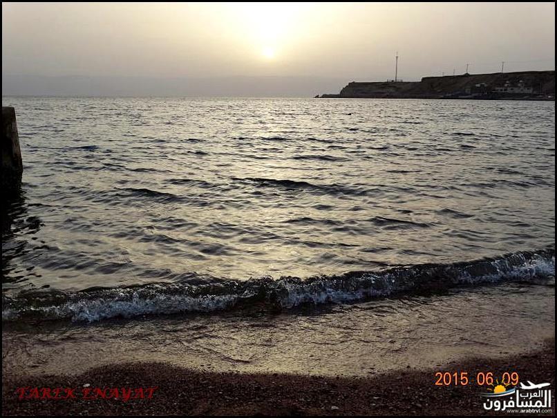 693460 المسافرون العرب رحلة غوص الى البحر الاحمر