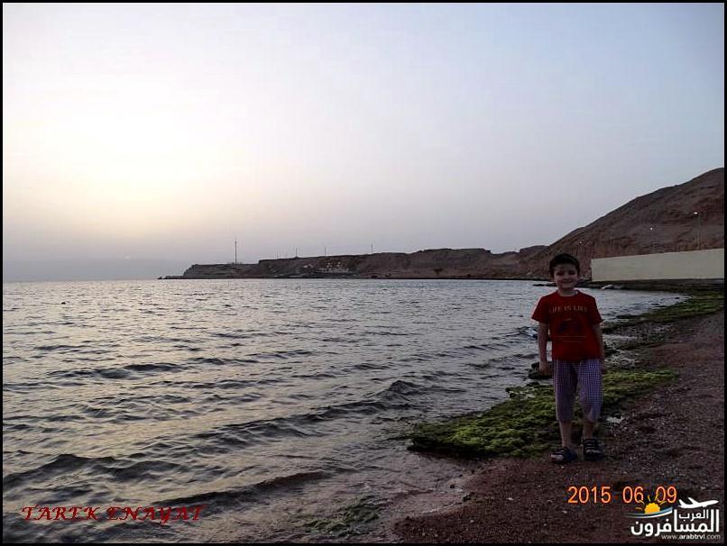 693464 المسافرون العرب رحلة غوص الى البحر الاحمر