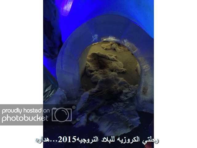 Image00004_zpskqqngknq.jpg