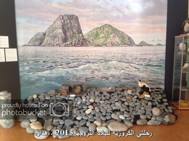 Image00140_zpso3sson4d.jpg