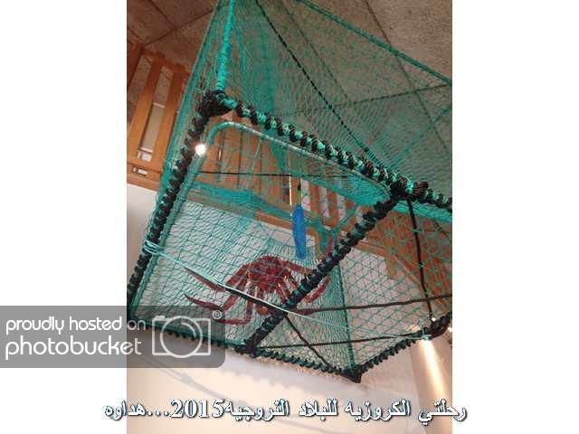 Image00145_zpsvw2dt944.jpg