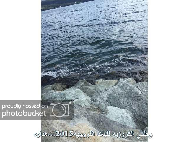 Image00040_zpsnoq7u48c.jpg