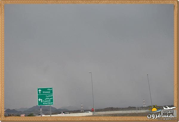694519 المسافرون العرب وادي شوكة