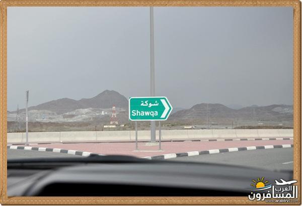 694520 المسافرون العرب وادي شوكة