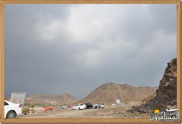 694526 المسافرون العرب وادي شوكة