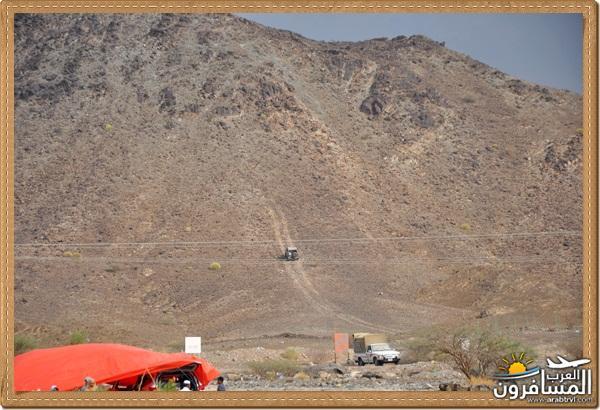 694533 المسافرون العرب وادي شوكة