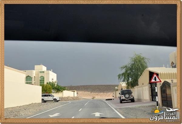 694564 المسافرون العرب وادي شوكة