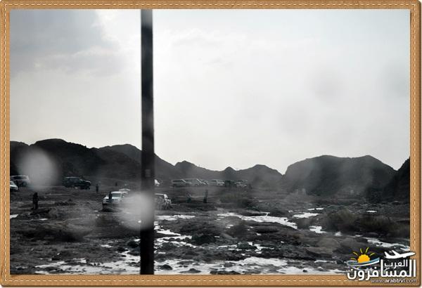 694571 المسافرون العرب وادي شوكة