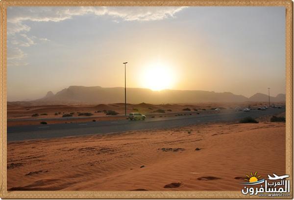694573 المسافرون العرب وادي شوكة