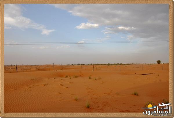 694575 المسافرون العرب وادي شوكة