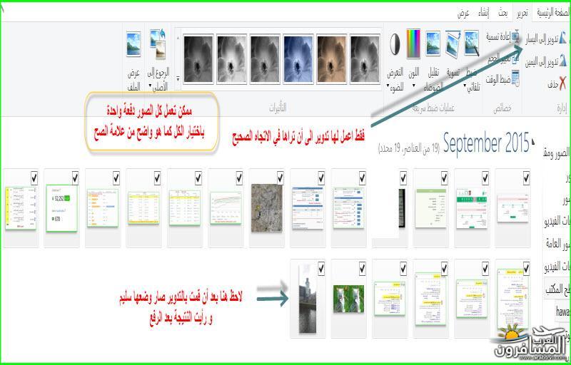arabtrvl1441720546721.jpg