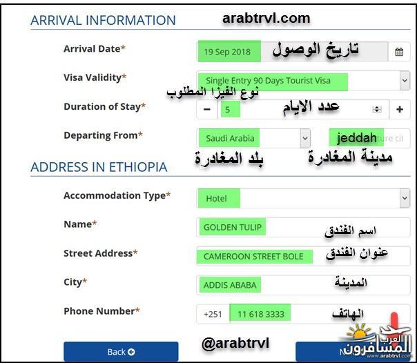 arabtrvl1537089819822.jpg