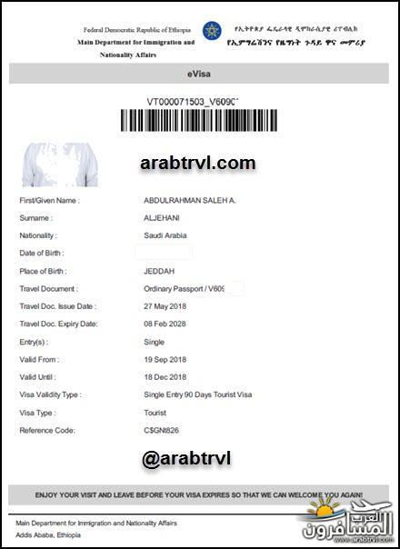 arabtrvl1537100530861.jpg