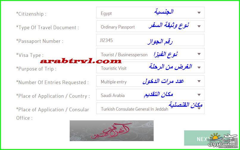 arabtrvl1454995469645.jpg
