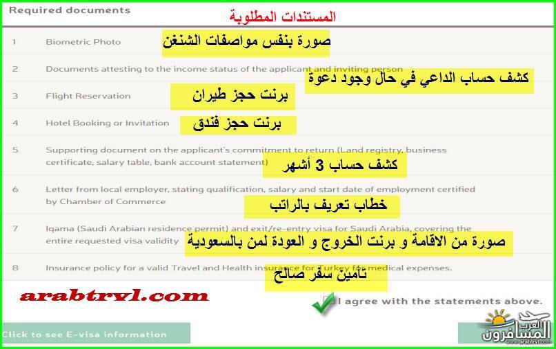arabtrvl1454995469748.jpg