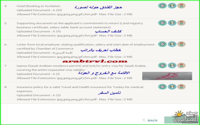 arabtrvl1454995660977.jpg