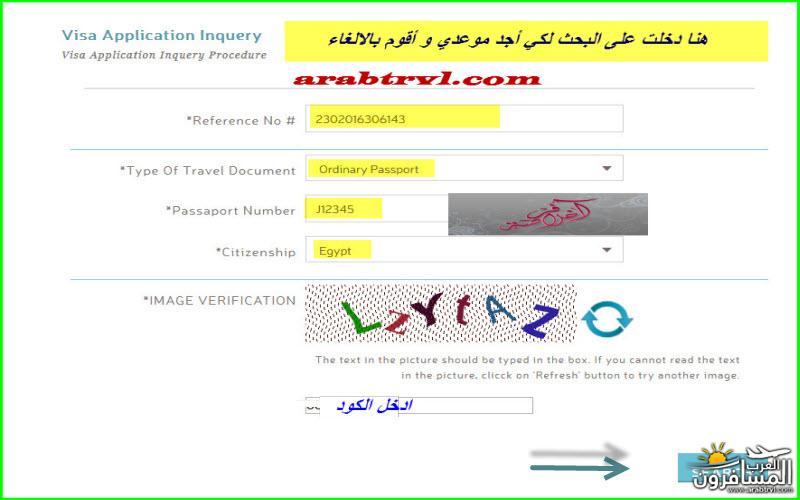 arabtrvl1454995828687.jpg