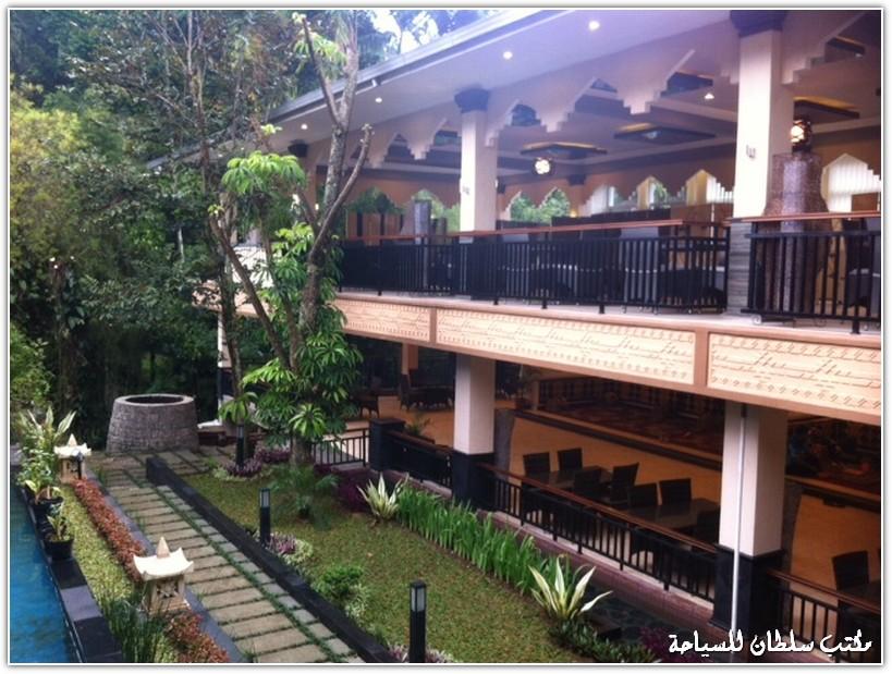 arab_travelers_malaysia_1387345120_608.jpg