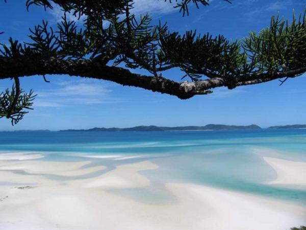 ach-Whitsunday-Island-Australia71-728x546_thumb[2].jpg