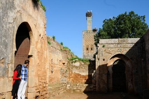 arab_travelers_tours_photo_1409285903_671.jpg