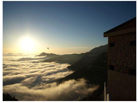 arab_travelers_tours_photo_1410150789_144.jpg