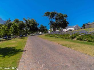stellenbosch-10.jpg