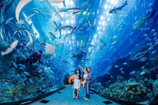 Travel-to-Dubai7.jpg