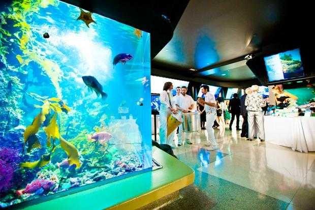 Vancouver-Aquarium-4.jpg