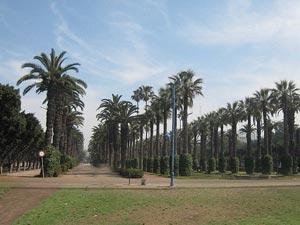 Parc-de-la-Ligue-Arabe.jpg