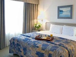 فندق كوالتي سويتز المطار 2017 83901 المسافرون العرب