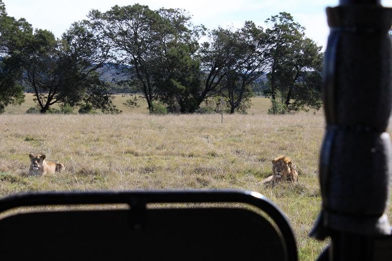 صور من رحلتى الى جنوب افريقيا صور رائعة جدا جدا جدا
