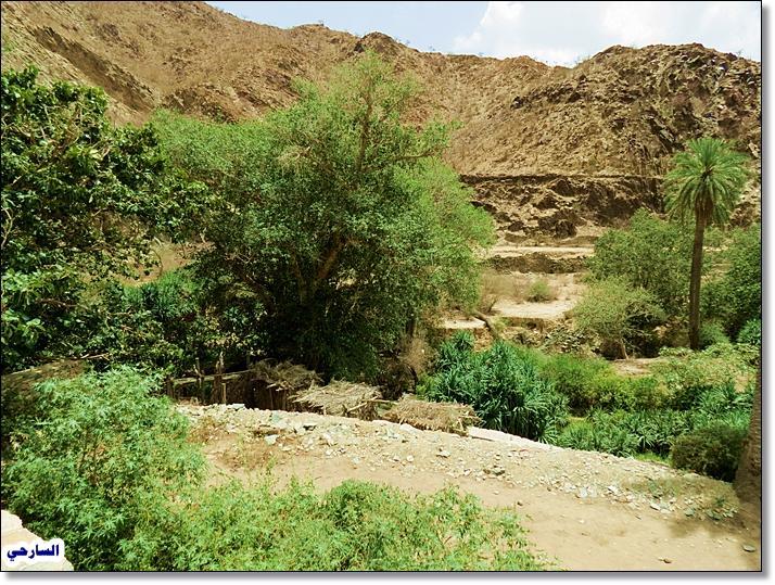 صورأشهر القرى الأثرية على مستوى المملكة (قرية ذي عين الأثرية )