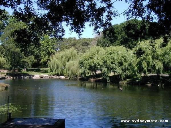 Centennial Park....سنتينيال بارك ( حدائق سيدنى الرائعة بالصور )