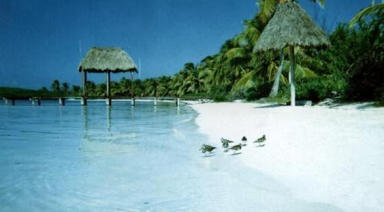 أهم المقاصد السياحيه في ولاية كوينتانا المكسيكية ( جزيرة كونتوي)
