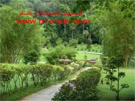 اجازة مميزة فى جزيرة بيانج ماليزيا