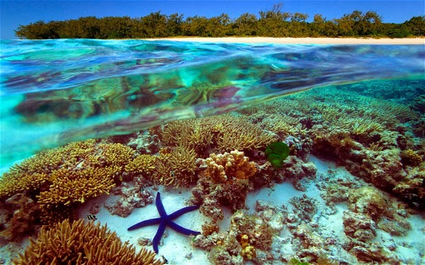 ولاية كوينزلاند وهي ثاني أكبر ولايه من ولايات استراليا والأكثر شهرةً فيما بينهم وهي