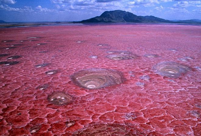 بحيرة نظرون فى تنزانيا lake natron, tanzania ( احد اجمل واغرب الاماكن السياحية فى ال